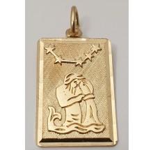 Sternzeichen Wassermann Anhänger aus Gold 333/-  - 06.9650.03.11-wass